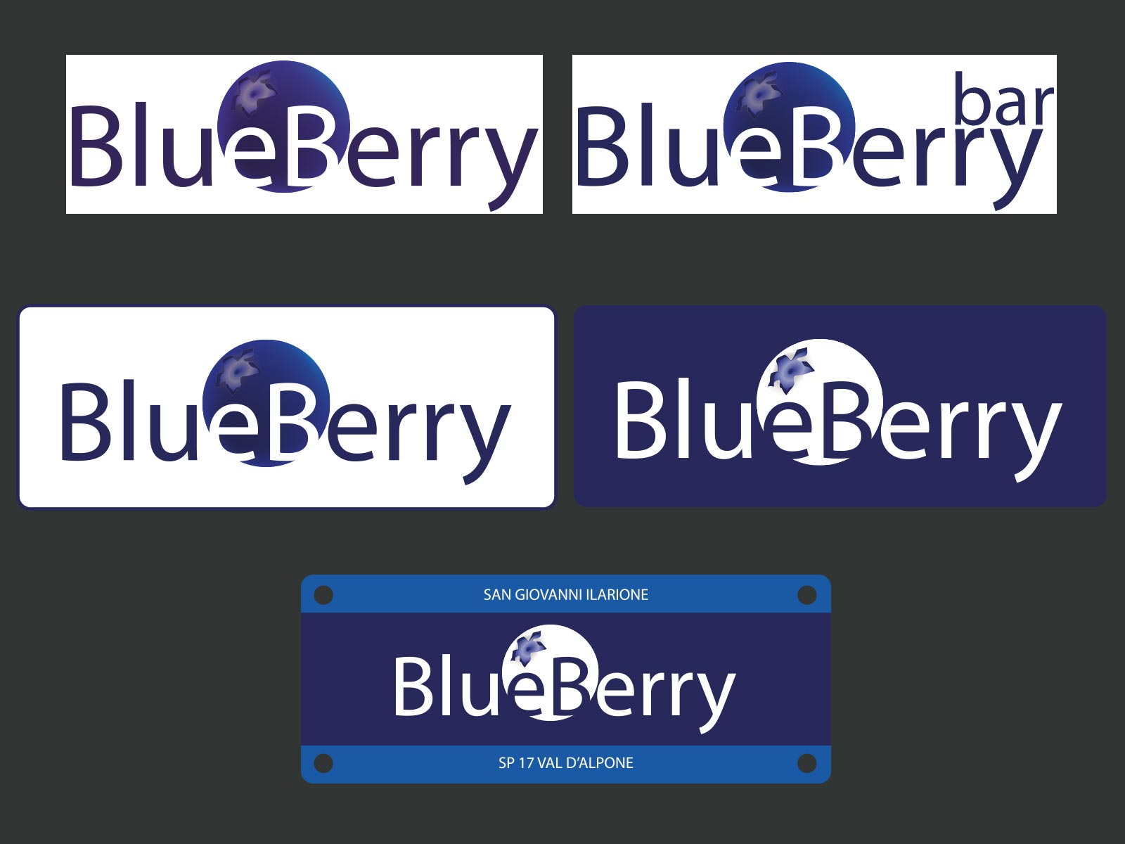 pic-blueberry-logo
